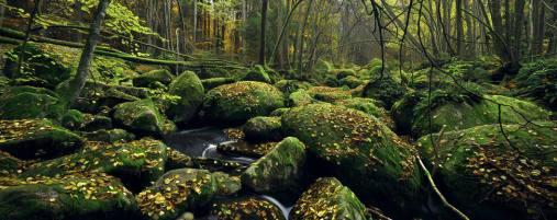 hidden creek, Kilian Schonberger